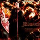 bleach-manga-anime_1024x768_92018