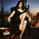 the-good-wife-the-third-season-dvd-cover-44[1]