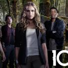 the-100-avis