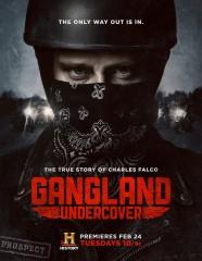 Gangland_Undercover