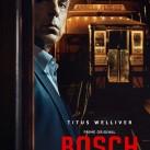 bosch_big_91033_700_1000