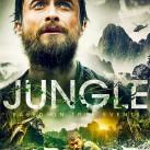 jungle-104312