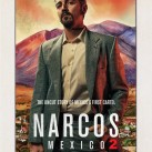 Narcos-Mexico-7-690x1024