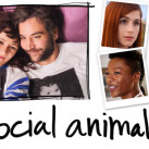 SOCIALANIMAW0139319_BAN1_2424_NEWTV