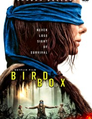 dvd-covers-bird-box-136519_New1