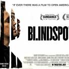 Blindspotting-Banniere02-800x445