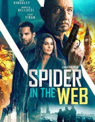 1579360499_spider-in-the-web