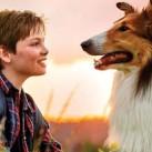 lassie-come-home-2020