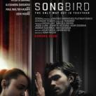 Songbid-Poster