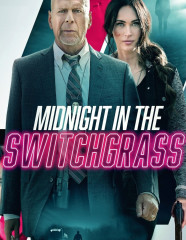 Midnight-In-The-Switchgrass